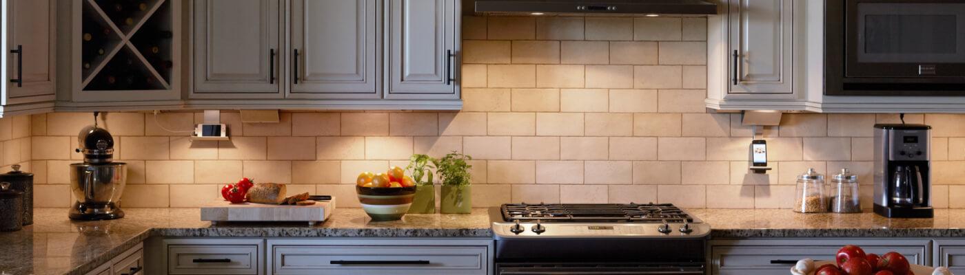 Modular Led Puck Or Linear Lights Designed By Donna Viningtraditional Kitchen Undercabinetlightingsystem 1